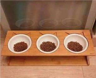 cat-bowls